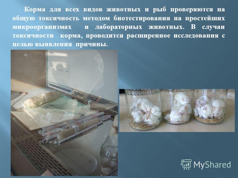 Корма для всех видов животных и рыб проверяются на общую токсичность методом биотестирования на простейших микроорганизмах и лабораторных животных. В случаи токсичности корма, проводится расширенное исследования с целью выявления причины.