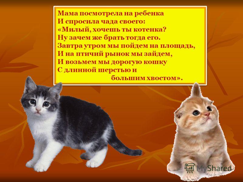 Мама посмотрела на ребенка И спросила чада своего: «Милый, хочешь ты котенка? Ну зачем же брать тогда его. Завтра утром мы пойдем на площадь, И на птичий рынок мы зайдем, И возьмем мы дорогую кошку С длинной шерстью и большим хвостом». Мама посмотрел
