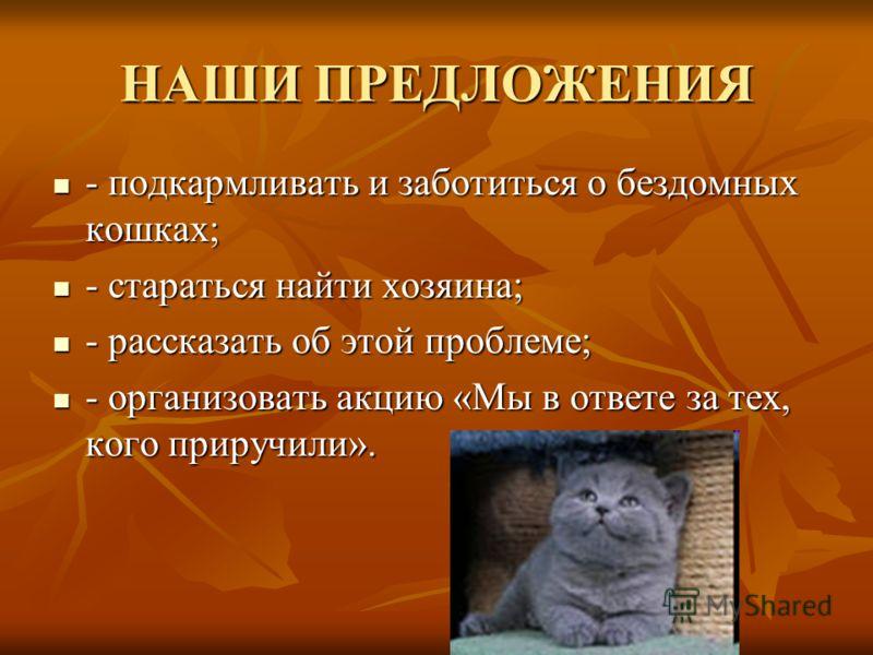 НАШИ ПРЕДЛОЖЕНИЯ - подкармливать и заботиться о бездомных кошках; - подкармливать и заботиться о бездомных кошках; - стараться найти хозяина; - стараться найти хозяина; - рассказать об этой проблеме; - рассказать об этой проблеме; - организовать акци