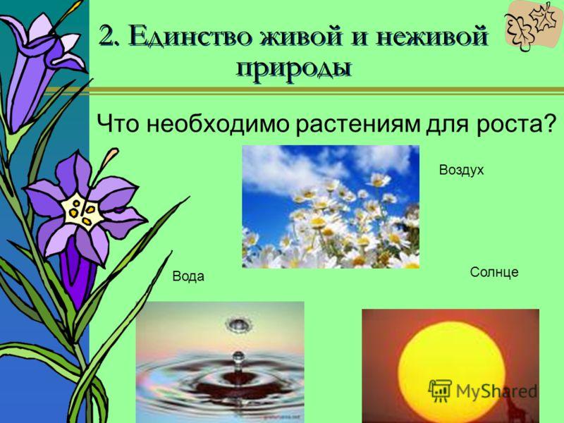 2. Единство живой и неживой природы Что необходимо растениям для роста? Воздух Солнце Вода
