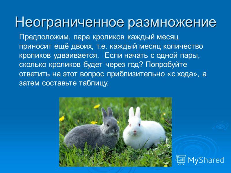 Неограниченное размножение Предположим, пара кроликов каждый месяц приносит ещё двоих, т.е. каждый месяц количество кроликов удваивается. Если начать с одной пары, сколько кроликов будет через год? Попробуйте ответить на этот вопрос приблизительно «с