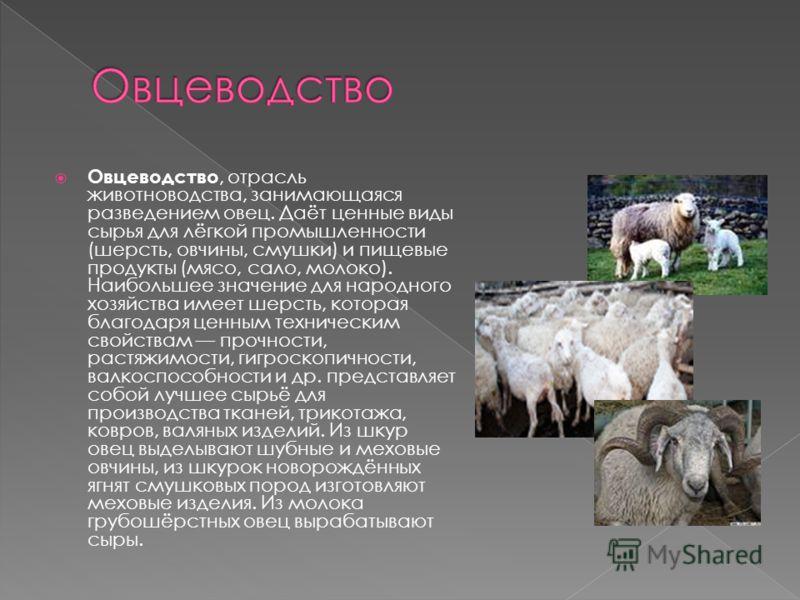 авиабилеты Пекина животноводство знасение отрасли в народном хозяйстве видите, нет
