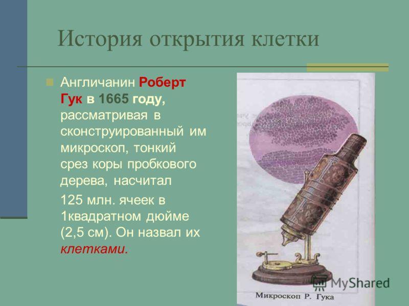 История открытия клетки Англичанин Роберт Гук в 1665 году, рассматривая в сконструированный им микроскоп, тонкий срез коры пробкового дерева, насчитал 125 млн. ячеек в 1квадратном дюйме (2,5 см). Он назвал их клетками.