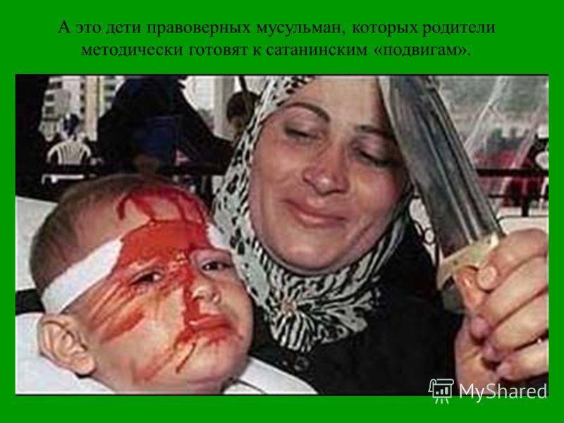 А это дети правоверных мусульман, которых родители методически готовят к сатанинским «подвигам».