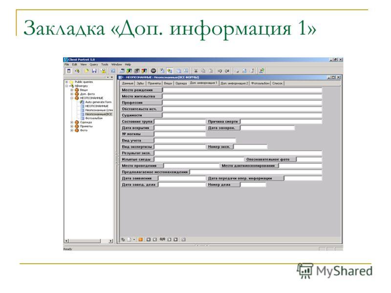 Закладка «Доп. информация 1»