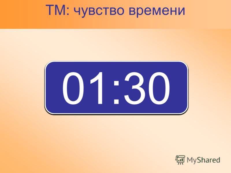 00:00 00:01 00:05 00:10 00:15 00:20 00:25 00:30 00:35 00:40 00:45 00:50 00:55 01:00 01:05 01:10 01:15 01:20 01:25 01:30 ТМ: чувство времени