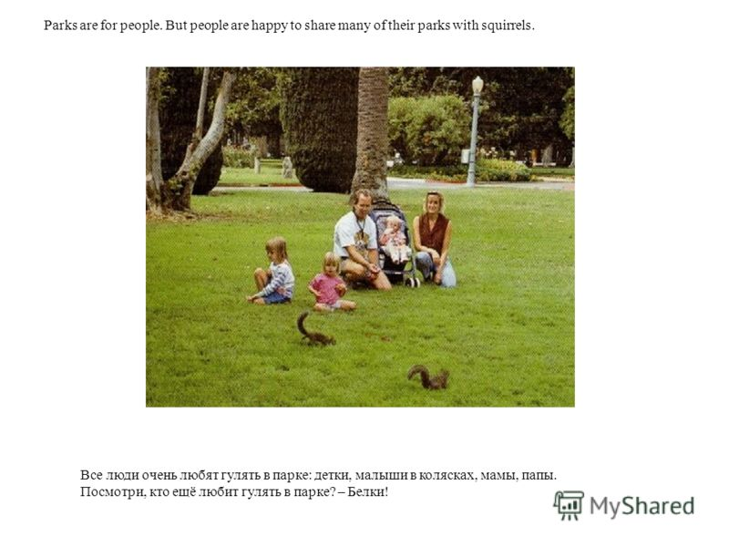 Все люди очень любят гулять в парке: детки, малыши в колясках, мамы, папы. Посмотри, кто ещё любит гулять в парке? – Белки! Parks are for people. But people are happy to share many of their parks with squirrels.