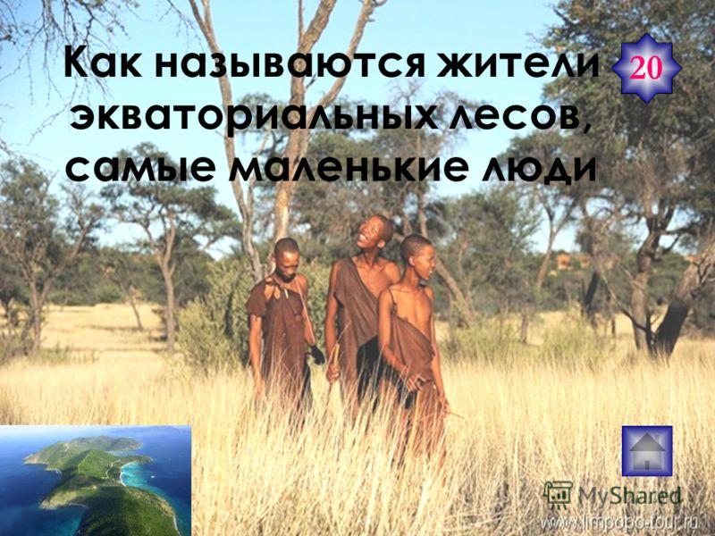 «Синие призраки» кочевники Сахары. Туареги 20