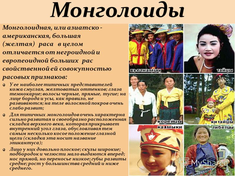 Монголоидная, или азиатско - американская, большая (желтая) раса в целом отличается от негроидной и европеоидной больших рас свойственной ей совокупностью расовых признаков: У ее наиболее типичных представителей кожа смуглая, желтоватых оттенков; гла