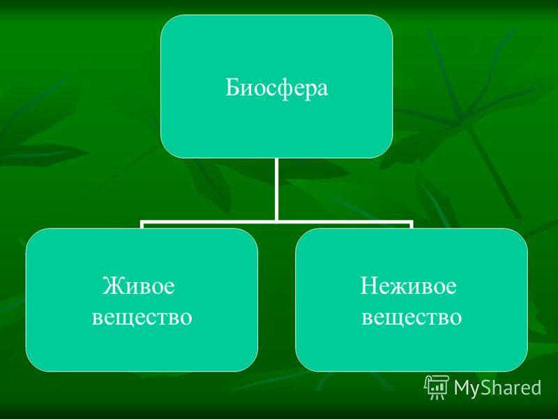 Биосфера Живое вещество Неживое вещество