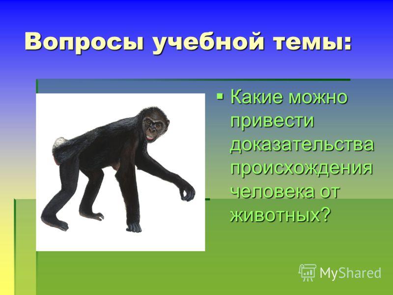 Вопросы учебной темы: Какие можно привести доказательства происхождения человека от животных? Какие можно привести доказательства происхождения человека от животных?