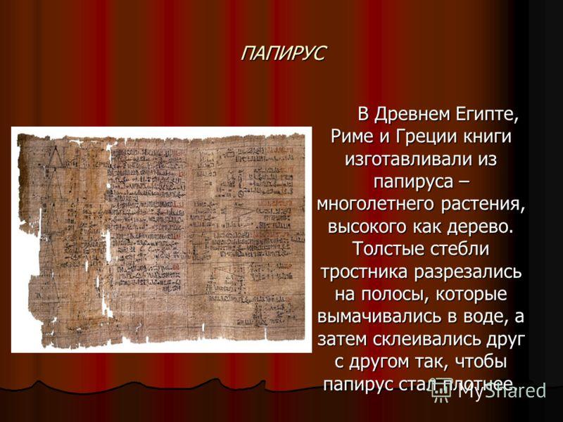 ПАПИРУС В Древнем Египте, Риме и Греции книги изготавливали из папируса – многолетнего растения, высокого как дерево. Толстые стебли тростника разрезались на полосы, которые вымачивались в воде, а затем склеивались друг с другом так, чтобы папирус ст