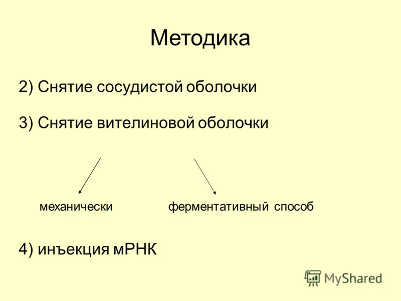 2) Снятие сосудистой оболочки 3) Снятие вителиновой оболочки 4) инъекция мРНК Методика механическиферментативный способ