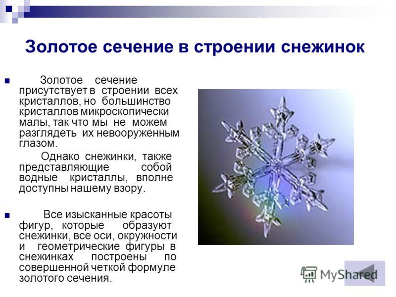 Золотое сечение в строении снежинок Золотое сечение присутствует в строении всех кристаллов, но большинство кристаллов микроскопически малы, так что мы не можем разглядеть их невооруженным глазом. Однако снежинки, также представляющие собой водные кр