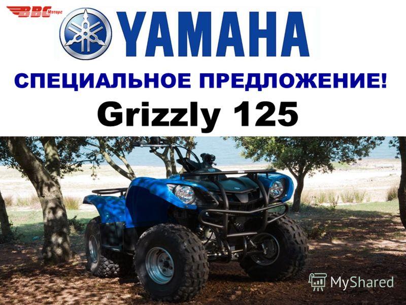 СПЕЦИАЛЬНОЕ ПРЕДЛОЖЕНИЕ! Grizzly 125