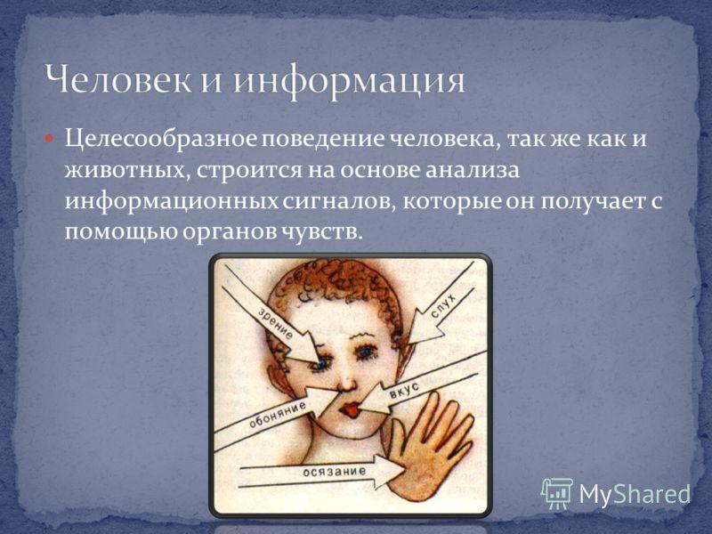 Целесообразное поведение человека, так же как и животных, строится на основе анализа информационных сигналов, которые он получает с помощью органов чувств.