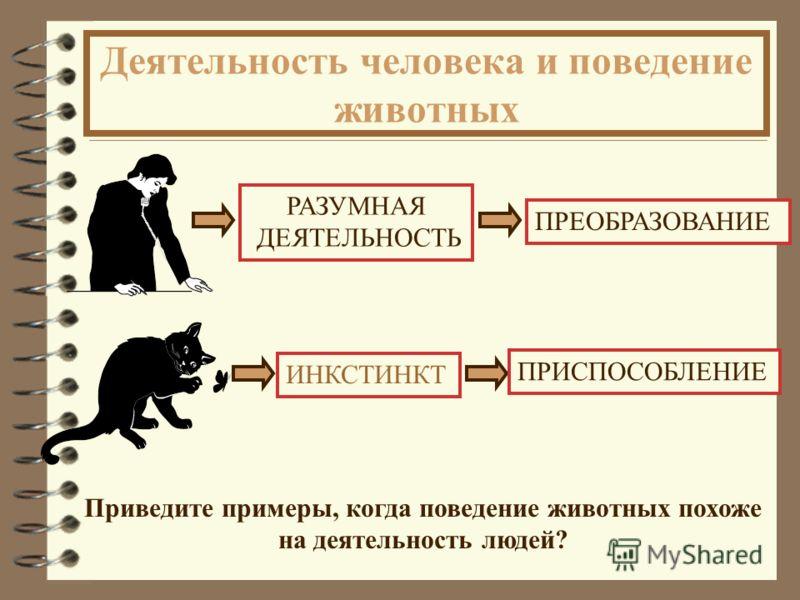 Деятельность человека и поведение животных В чем коренное отличие действий человека и животных ?