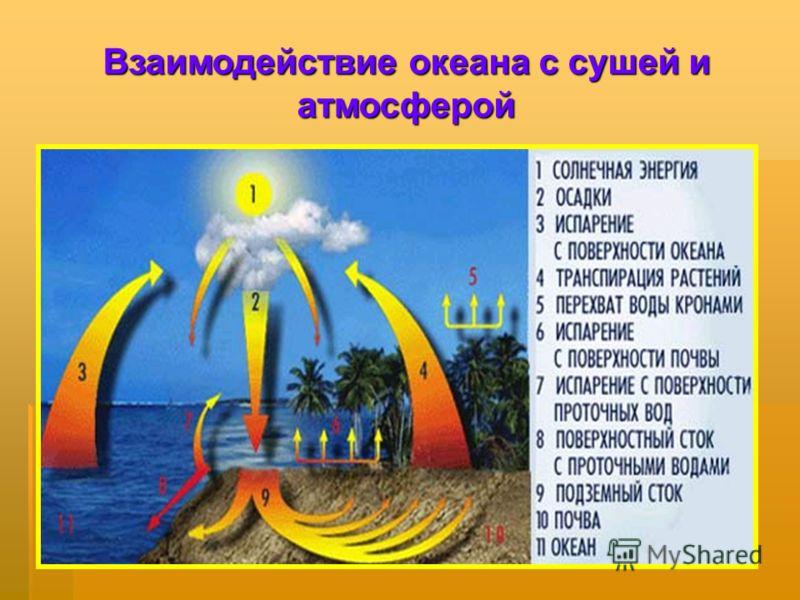 Взаимодействие океана с сушей и атмосферой