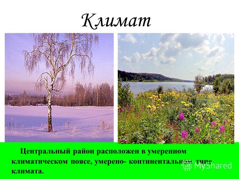 Климат Центральный район расположен в умеренном климатическом поясе, умерено- континентальном типе климата.