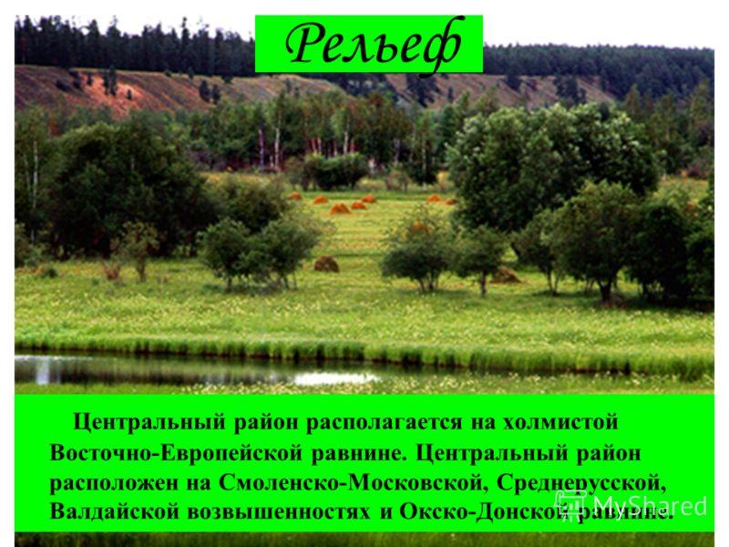 Рельеф Центральный район располагается на холмистой Восточно-Европейской равнине. Центральный район расположен на Смоленско-Московской, Среднерусской, Валдайской возвышенностях и Окско-Донской равнине.