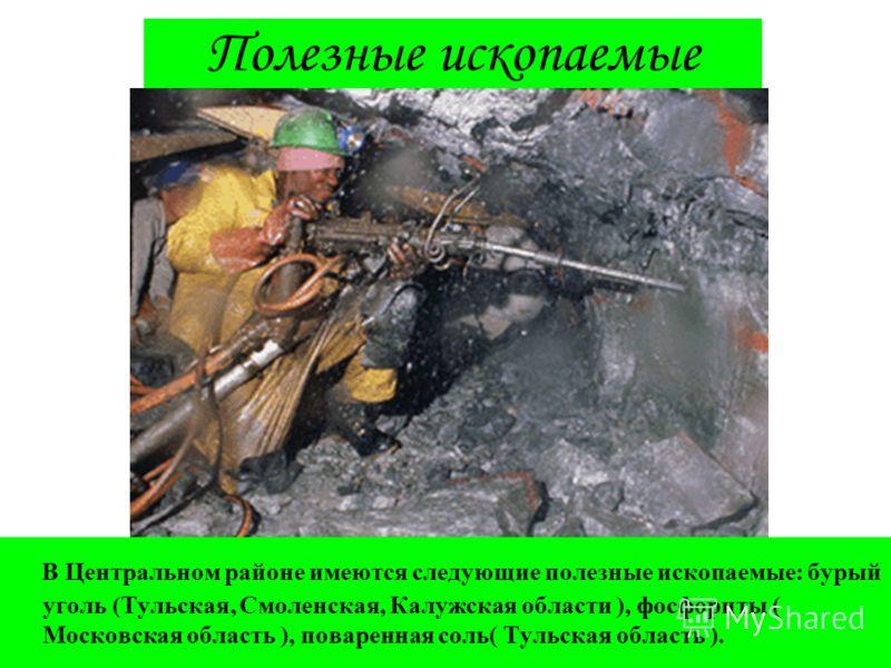 Полезные ископаемые В Центральном районе имеются следующие полезные ископаемые: бурый уголь (Тульская, Смоленская, Калужская области ), фосфориты ( Московская область ), поваренная соль( Тульская область ).