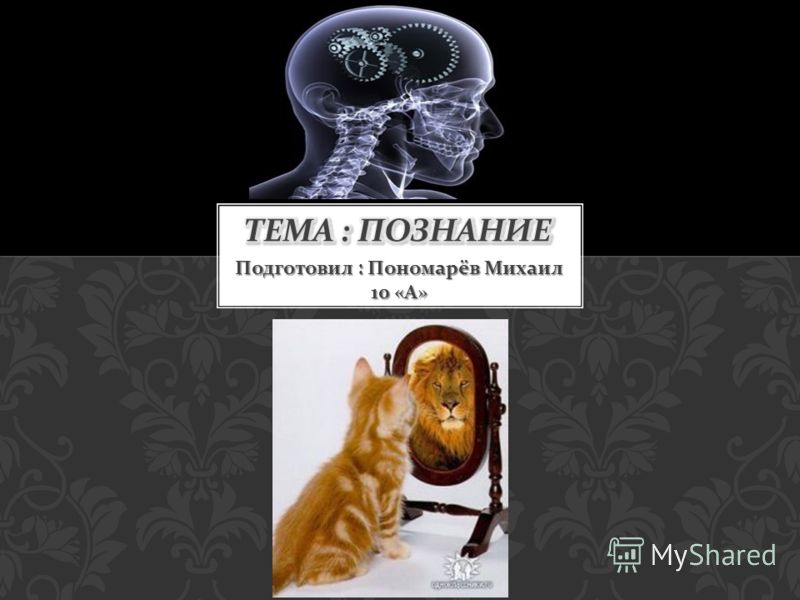Подготовил : Пономарёв Михаил 10 « А »
