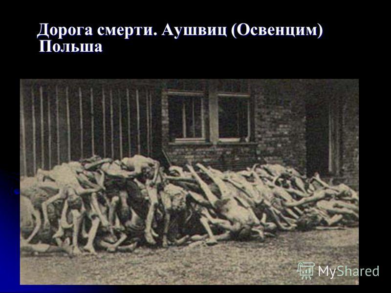 Дорога смерти. Аушвиц (Освенцим) Польша Дорога смерти. Аушвиц (Освенцим) Польша