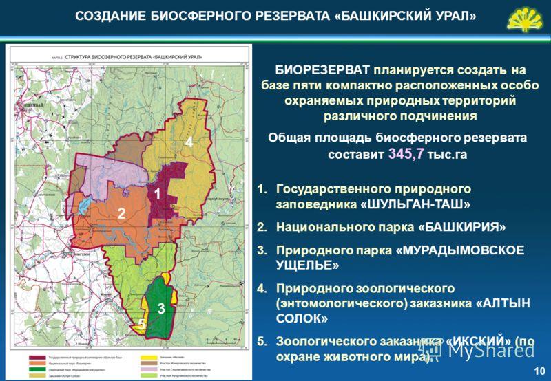 БИОРЕЗЕРВАТ планируется создать на базе пяти компактно расположенных особо охраняемых природных территорий различного подчинения 1.Государственного природного заповедника «ШУЛЬГАН-ТАШ» 2.Национального парка «БАШКИРИЯ» 3.Природного парка «МУРАДЫМОВСКО