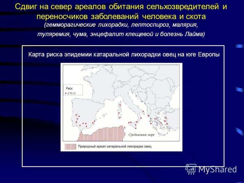 Сдвиг на север ареалов обитания сельхозвредителей и переносчиков заболеваний человека и скота (гемморагические лихорадки, лептоспироз, малярия, туляремия, чума, энцефалит клещевой и болезнь Лайма) Карта риска эпидемии катаральной лихорадки овец на юг