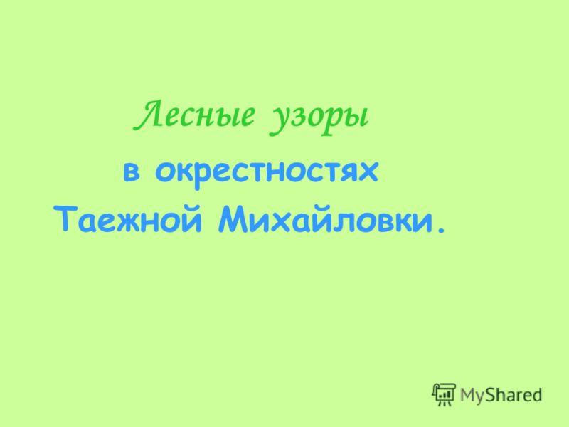 Лесные узоры в окрестностях Таежной Михайловки.