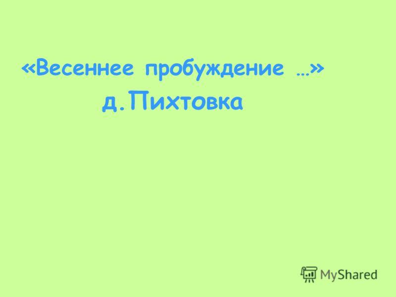 «Весеннее пробуждение …» д.Пихтовка
