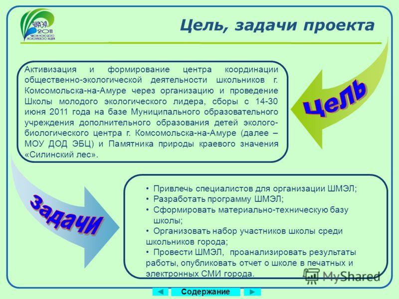 Company Logo www.themegallery.com Активизация и формирование центра координации общественно-экологической деятельности школьников г. Комсомольска-на-Амуре через организацию и проведение Школы молодого экологического лидера, сборы с 14-30 июня 2011 го