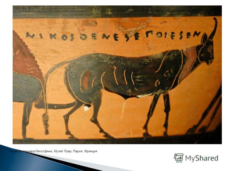 Подпись гончара Никосфена, Музей Лувр, Париж, Франция