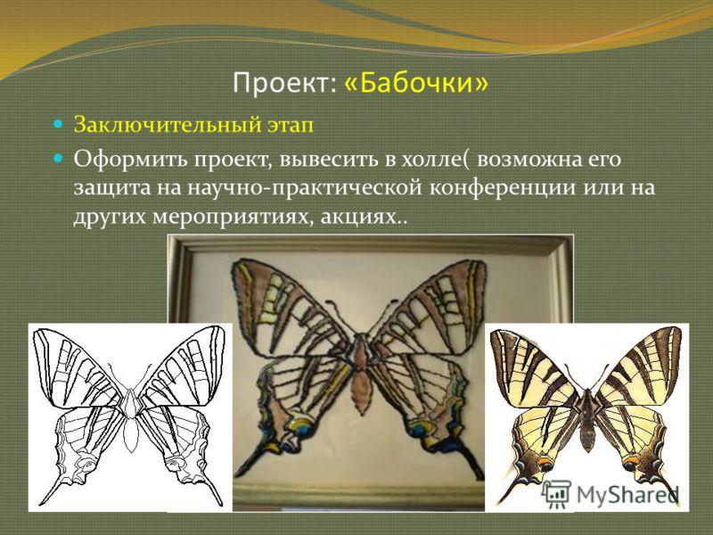 Проект: «Бабочки» 12 Заключительный этап Оформить проект, вывесить в холле( возможна его защита на научно-практической конференции или на других мероприятиях, акциях..