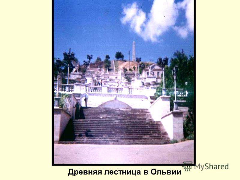 Древняя лестница в Ольвии