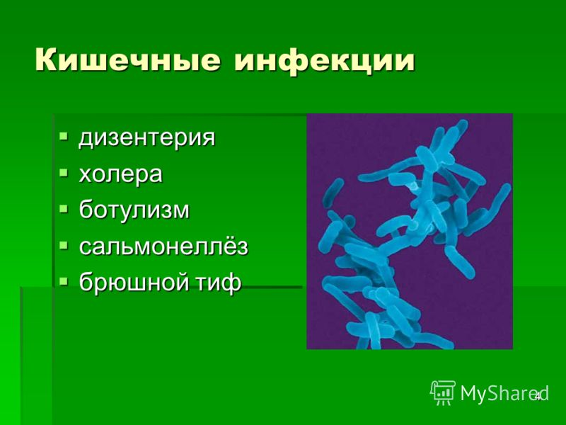 4 Кишечные инфекции дизентерия дизентерия холера холера ботулизм ботулизм сальмонеллёз сальмонеллёз брюшной тиф брюшной тиф