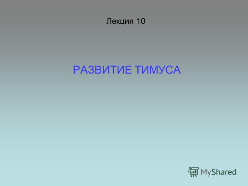 Лекция 10 РАЗВИТИЕ ТИМУСА
