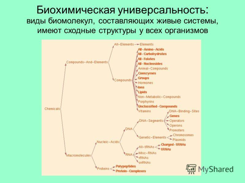 Биохимическая универсальность : виды биомолекул, составляющих живые системы, имеют сходные структуры у всех организмов