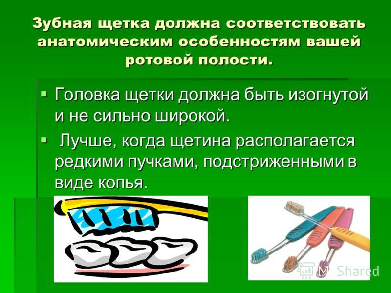 Зубная щетка должна соответствовать анатомическим особенностям вашей ротовой полости. Головка щетки должна быть изогнутой и не сильно широкой. Головка щетки должна быть изогнутой и не сильно широкой. Лучше, когда щетина располагается редкими пучками,