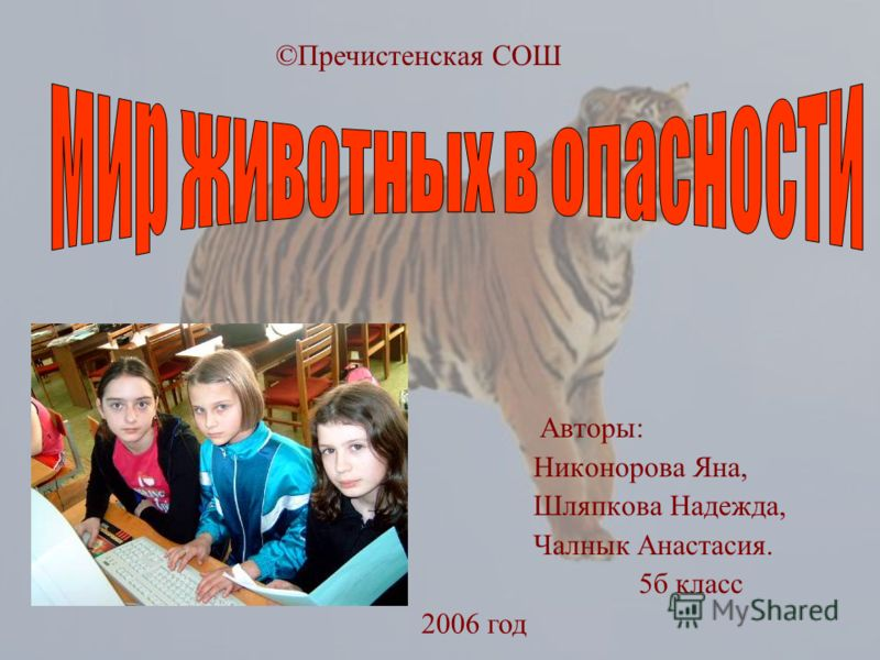 Авторы: Никонорова Яна, Шляпкова Надежда, Чалнык Анастасия. 5б класс ©Пречистенская СОШ 2006 год