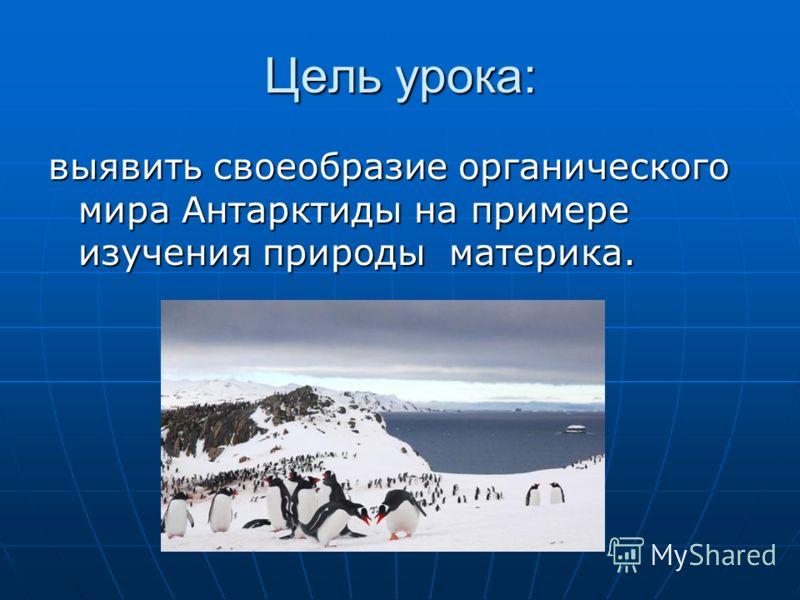Цель урока: выявить своеобразие органического мира Антарктиды на примере изучения природы материка.