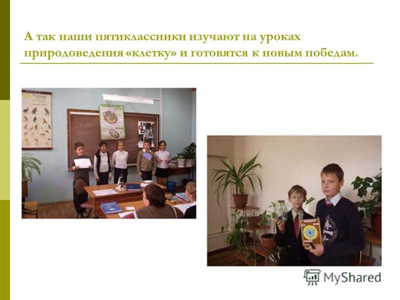 А так наши пятиклассники изучают на уроках природоведения «клетку» и готовятся к новым победам.