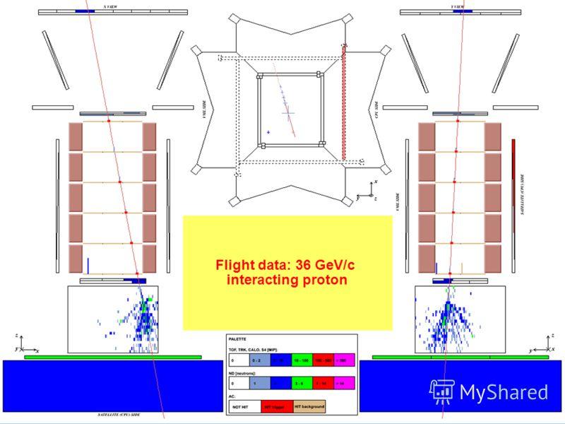 Mirko Boezio, CERN, 2008/10/28 Flight data: 36 GeV/c interacting proton