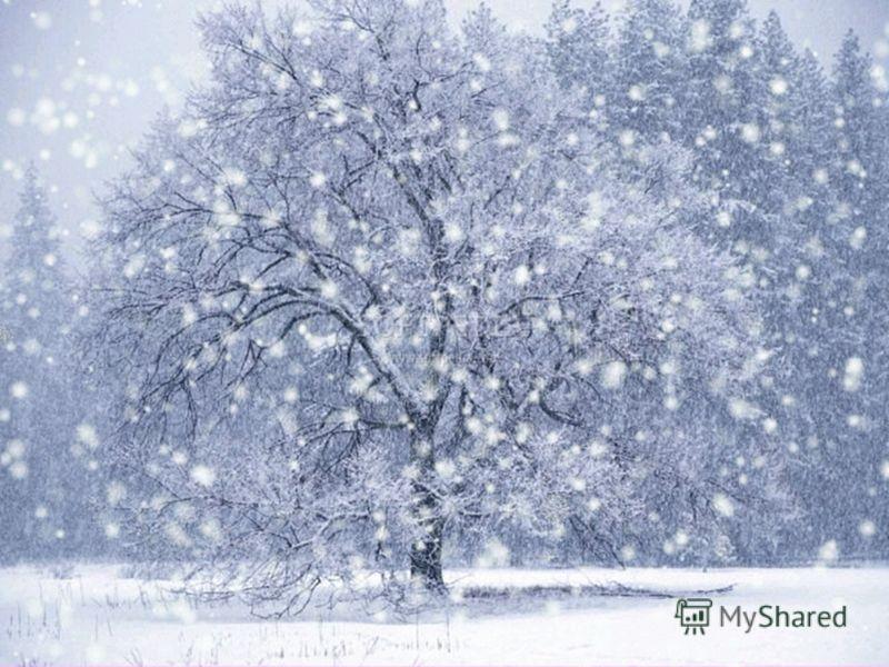 Снег падает, мелькает, вьется, Ложится белой пеленой. Вот солнце в облаках мигает, И иней на снегу сверкает. 19111912