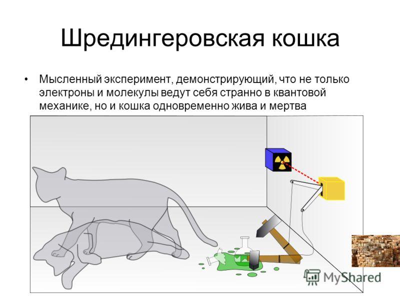 Шредингеровская кошка Мысленный эксперимент, демонстрирующий, что не только электроны и молекулы ведут себя странно в квантовой механике, но и кошка одновременно жива и мертва
