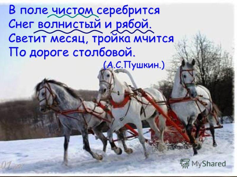 В поле чистом серебрится Снег волнистый и рябой. Светит месяц, тройка мчится По дороге столбовой. (А.С.Пушкин.)