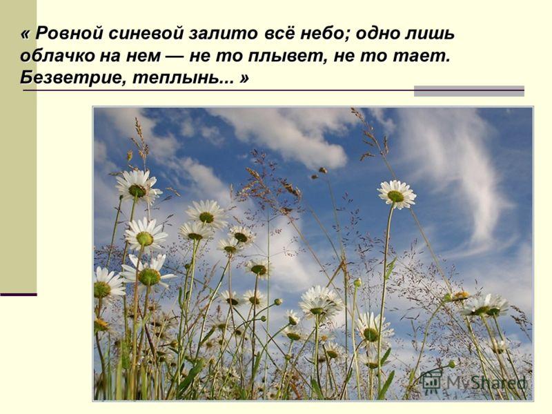« Ровной синевой залито всё небо; одно лишь облачко на нем не то плывет, не то тает. Безветрие, теплынь... »