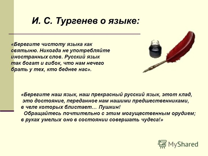 «Берегите чистоту языка как святыню. Никогда не употребляйте иностранных слов. Русский язык так богат и гибок, что нам нечего брать у тех, кто беднее нас». «Берегите наш язык, наш прекрасный русский язык, этот клад, это достояние, переданное нам наши