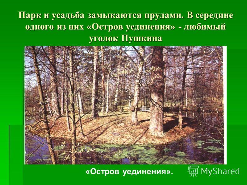 Парк и усадьба замыкаются прудами. В середине одного из них «Остров уединения» - любимый уголок Пушкина «Остров уединения».