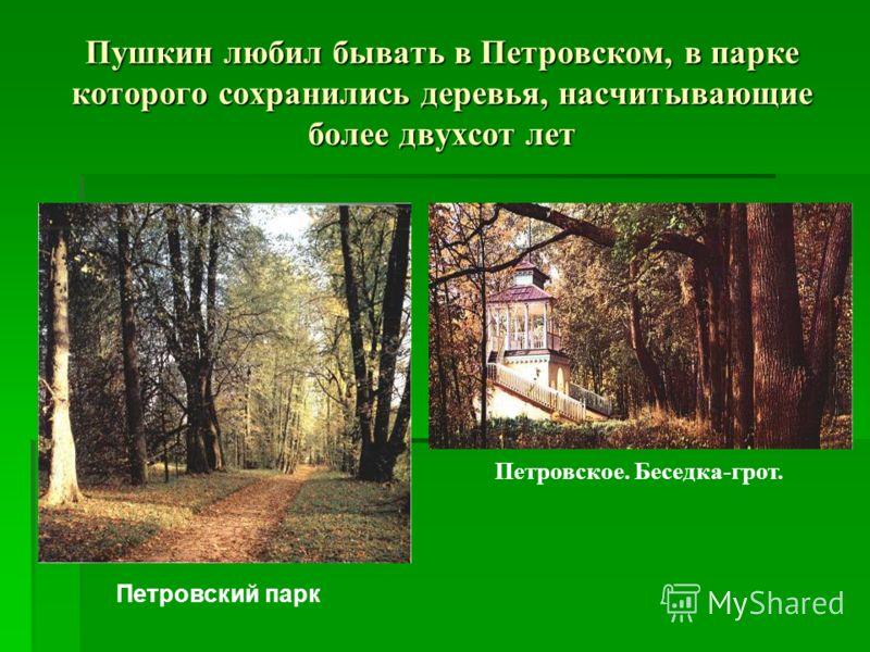 Пушкин любил бывать в Петровском, в парке которого сохранились деревья, насчитывающие более двухсот лет Петровский парк Петровское. Беседка-грот.